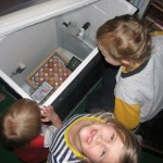 Into the incubator they go to bake at about 100 degrees for 21 days